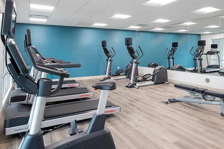 https://hibourbonnais.com/wp-content/uploads/2020/07/Health-and-Fitness-Center-Holiday-Inn-Bourbonnais-1.jpg